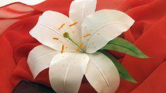Как самостоятельно сделать лилию из шелка