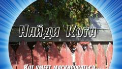 Ответы к игре Найди кота в Одноклассниках (все уровни эпизодов 9 и 10)