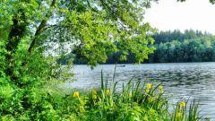 Как человек использует озерные экосистемы