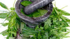 Травы для похудения: рецепты красоты