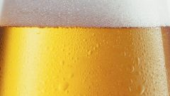 What is the best beer