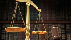 Что такое теория государства и права как наука