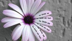 Как понять, любят тебя или нет