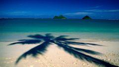 Что должно содержать заявление на отпуск?