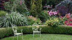 Как увеличить маленький сад