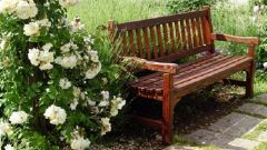 Как обустроить скамейку на даче