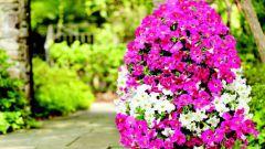 Как сделать оригинальный вертикальный цветник - колонну из цветов