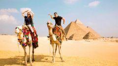 Как с пользой отдохнуть в Египте