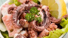 Деликатесы из осьминогов