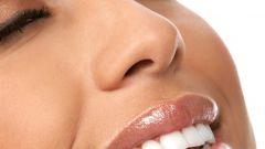 Функции и строение зуба человека