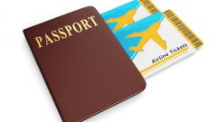 How to apply for a passport through public services