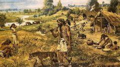 Что возникло раньше - земледелие или скотоводство