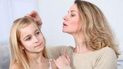 Как заводятся вши и как от них избавиться