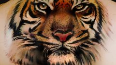 What does the tattoo of a tiger
