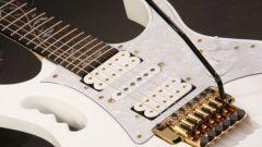 Какие существуют виды гитар