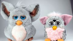 What can he do Furby