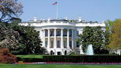 Какие шедевры украшают кабинеты белого дома