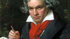 Где и когда родился Бетховен