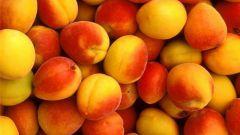 С какого возраста можно давать ребенку абрикос