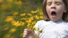 Чем отличается аллергия от диатеза