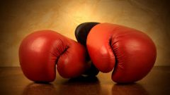 How to choose gloves for punching bag