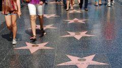 Сколько звезд на аллее славы в Голливуде
