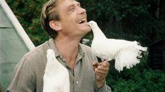 Где снимался фильм «Любовь и голуби»