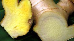 Как использовать имбирь при лечении рака груди
