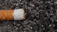 Are now the ashes of a cigarette