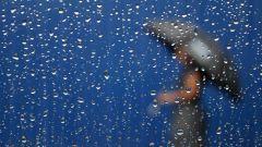 Зачем нужен дождь