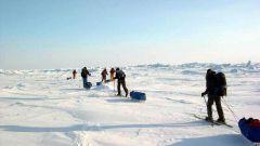 Кто первым достиг Северного полюса