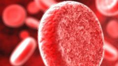 Какие продукты сгущают кровь