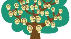 Как узнать своих предков