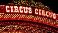 Какой цирк самый большой в мире