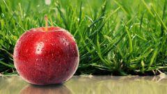 Кому на голову упало яблоко