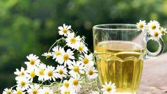 Чем полезен чай из ромашки