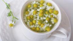 Полезные свойства ромашкового чая