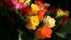 Сколько цветов лучше подарить девушке