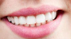 Сколько зубов у взрослого человека