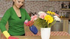 В чем заключается работа домохозяйки