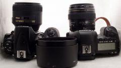 Что лучше: Canon или Nikon