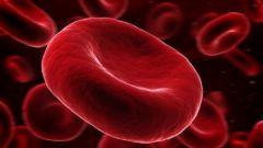 Чем опасно повышение гемоглобина