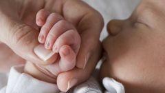 Какие шансы выжить у недоношенного ребенка