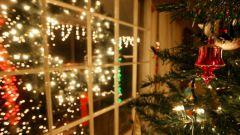 Какие праздники отмечаются 20 декабря
