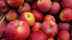 How useful Apple pectin