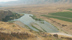По какой низменности протекают реки Тигр и Евфрат