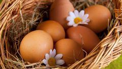 Сколько грамм в курином яйце