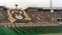 Куда улетел Олимпийский Мишка