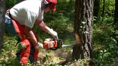 A chainsaw or chain saw: it is better to choose for the building?