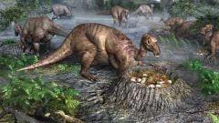 Как размножались динозавры